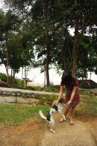 Quick Escape To Belitung (Part II) 8