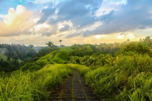 Ubud: Beautiful Traditional-Modern Coherency 11